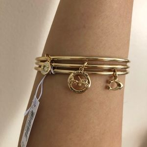 Coach Horse And Carriage Bangle ::Set of Three::